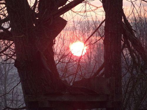 soleil du matin