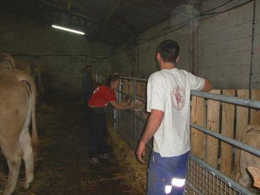 vachers 2