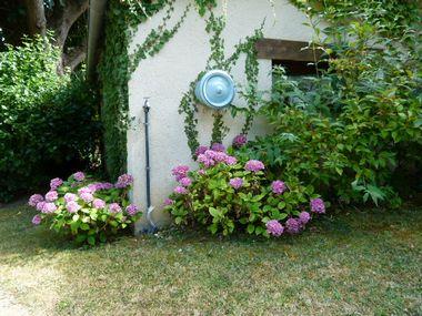 jardin chenes 1