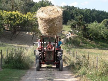 tracteur 4