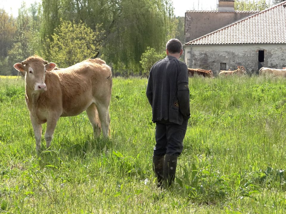 ferme lauzanac 11