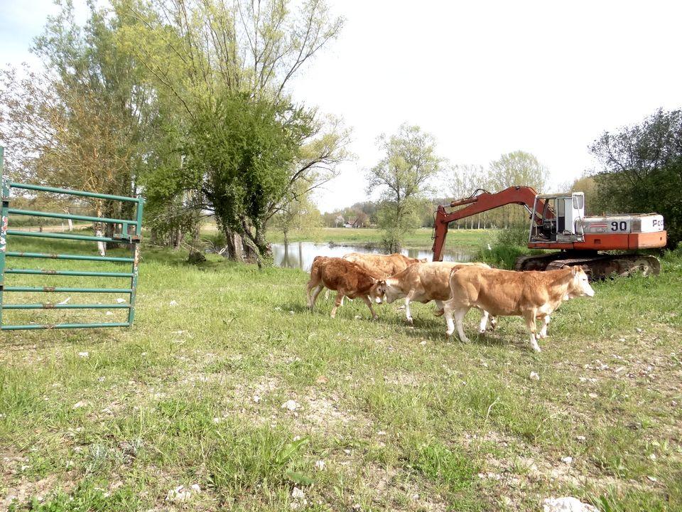 ferme lauzanac 7