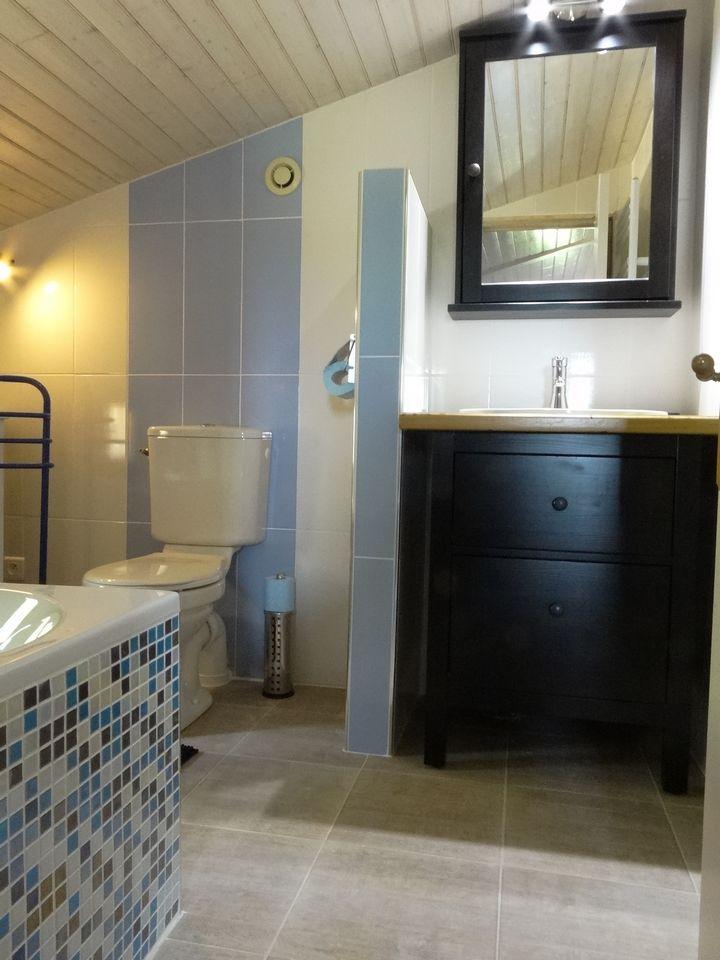 salle de bain pig 1