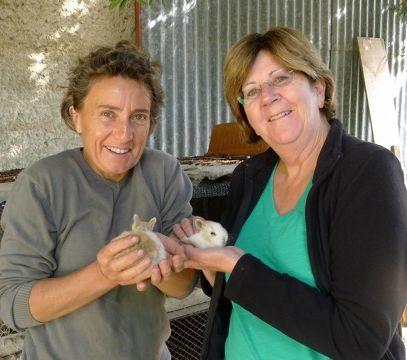 2014 - bunnies et angie