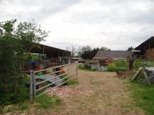 Depuis la prairie, l'espace à dégager pour construire le bâtiment d'élevage