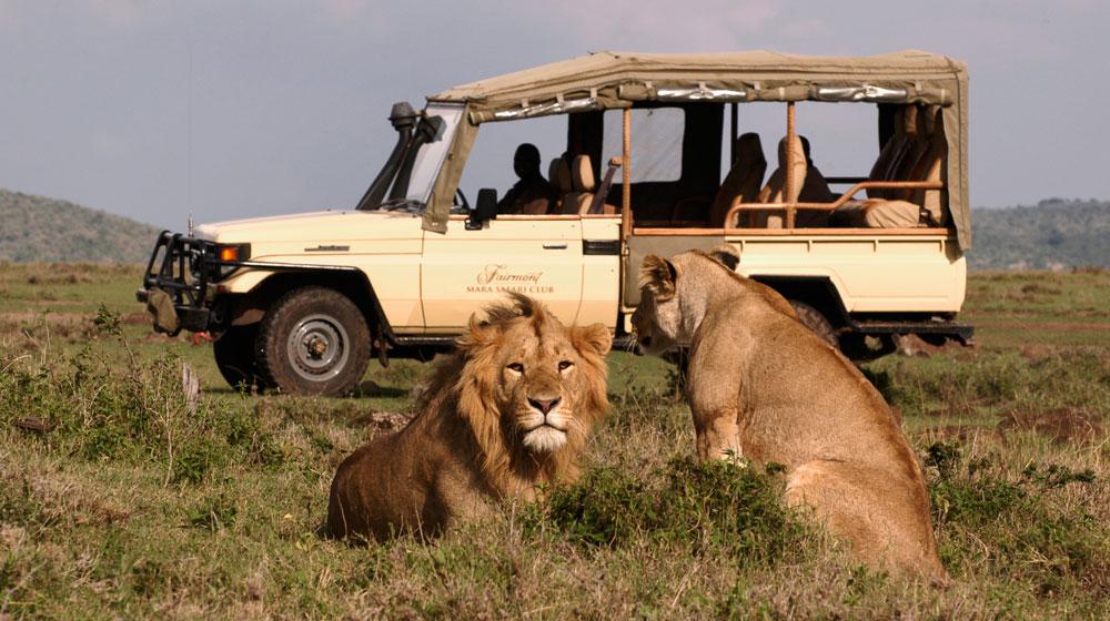 safari en dordogne lauzanac locations de vacances. Black Bedroom Furniture Sets. Home Design Ideas